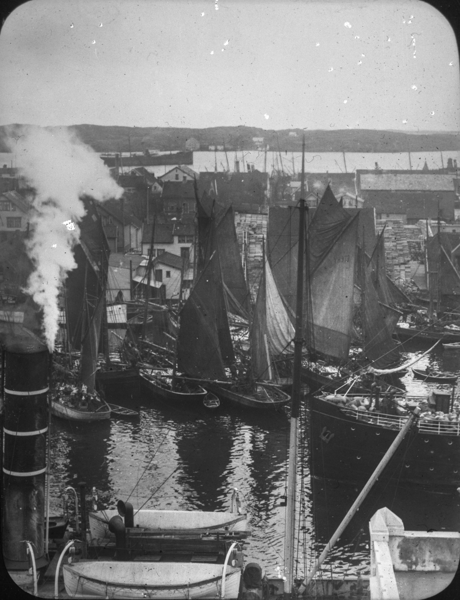 Flere seilfartøy ved kai i Smedasundet. Hasseløy i bakgrunnen(?). Deler av et dampskip i forgrunnen, hvor kun pipe, en mast og livbåter er synlig. Sjøhus og trehus bak seilfartøyene midt på bildet.