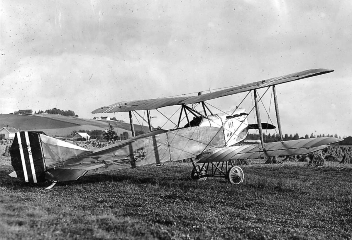 Åpen plass, kornåker, ett fly på bakken,FF.9 Kaje III nr. 53.
