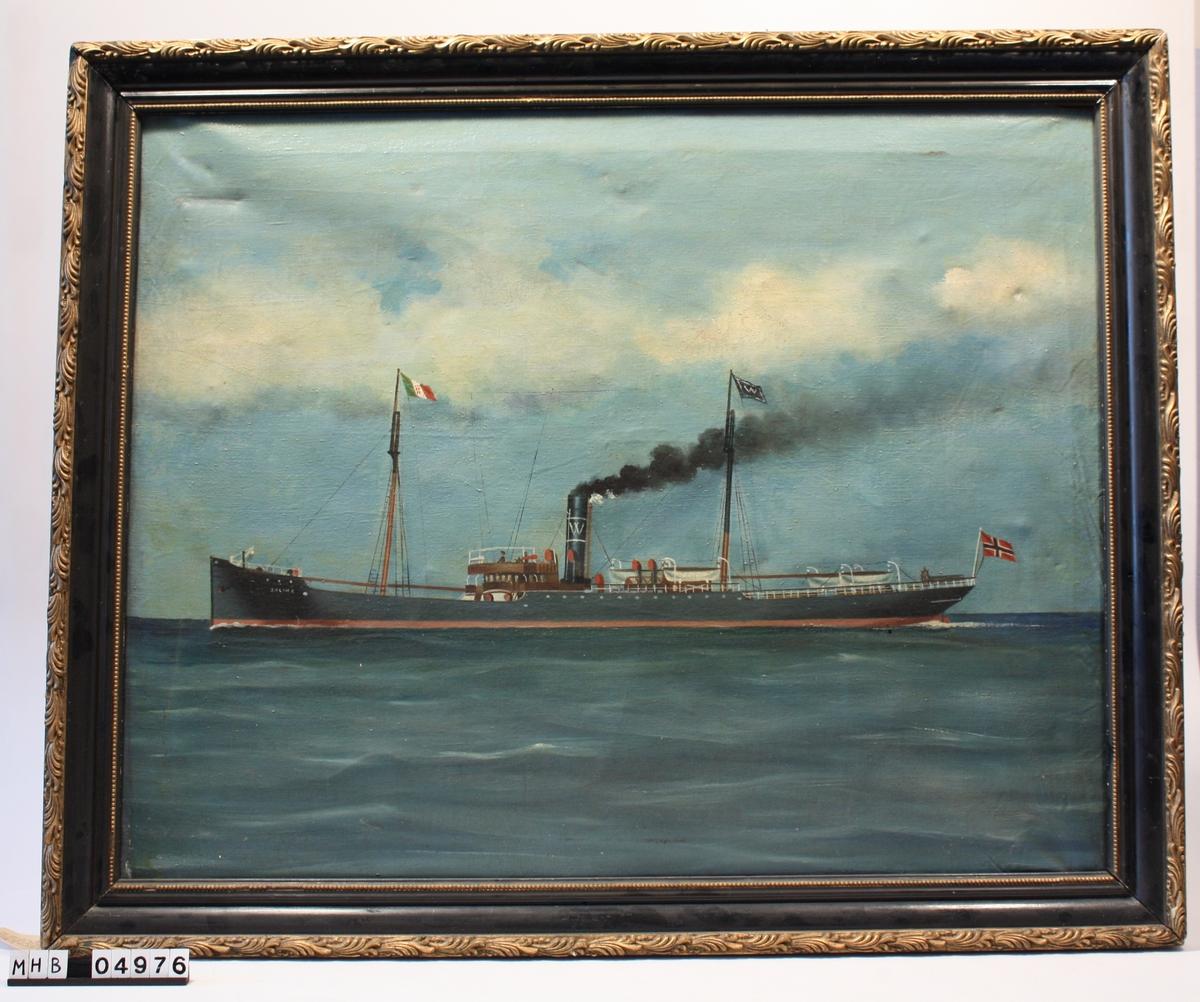 "SS ""Salina"". Capt. R. Svensen"