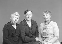 Kvinderaadet