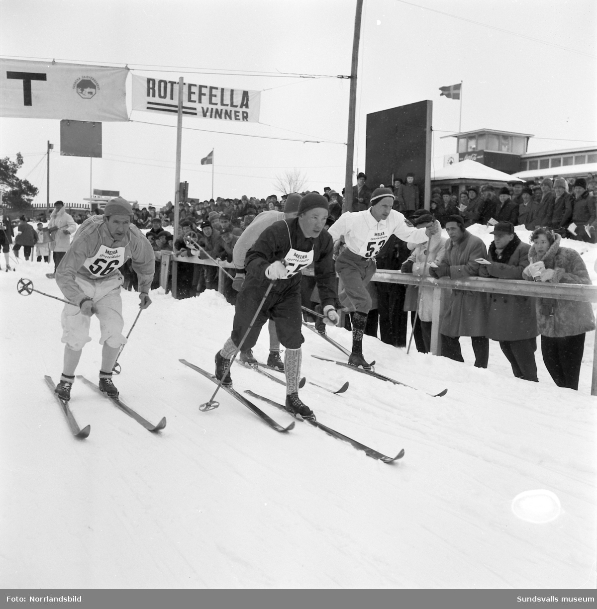 Skid-SM i Bergsåker, Sundsvall 1955. 30 km herrar, segrare Sune Larsson, IFK Mora.