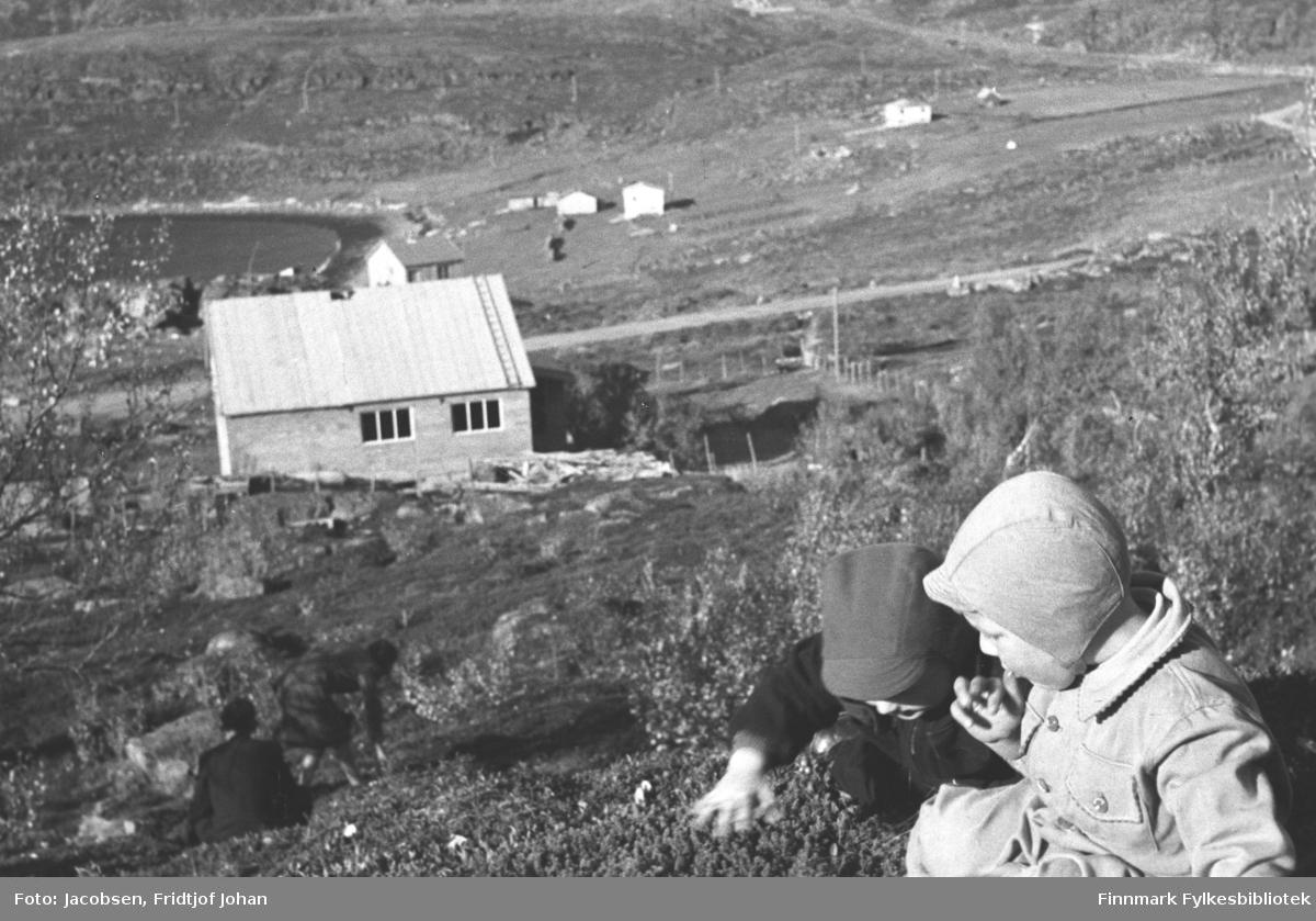To søskenbarn sitter og plukker bær. De er Ivar Jacobsen som har helt mørk buksedress og litt lysere skyggelue på seg. Ved siden av han sitter Arne Jacobsen. Han er iført en lys buksedress og lys lue. Det er en ganske bratt bakke fra dem og ned til huset. Terrenget har mest lyng, men noe gress og stein ses på området. Et løvtre ses helt til venstre på bildet. Nedenfor guttene står familien Nakkens hus, som er under byggning. Huset er umalt og har ikke fått dekke på taket eller skorstein. Bygningen har to tre-delte vinduer på langveggen. En takstige ligger på høyre side av taket. Et gjerde står i terrenget til høyre for huset. Nedefor Bjørkåsen går veien inntil Hammerfest, Rv94 idag. Flere hus står på jordet ovenfor havna. Oppe til venstre på bildet er Platået/Svarthammeren.