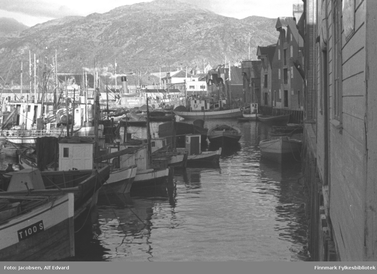 Havna i Hammerfest ligger speilblank. Mange fiskebåter/skøyter av tre ligger fortøyd og flere robåter ligger på vannet langs kaia til høyre på bildet. Baugen på det nærmeste fartøyet har registreringsmerke fra Troms. Det store bygget til høyre på bildet med tre åpne dører/porter på røstveggen er Gabrielsen trelast. Ved siden av er bygget til fiskekjøperne Risvåg og Jensen. Kaia som ses midt på bildet er gamle Dampskipskaia og fjellet i bakgrunnen er Mollafjell. Bildet er tatt omtrent fra hjørnet av havna der Jernteppet er i dag. Det er ikke snø eller snøflekker i fjellet og formiddagssola skinner så bildet er nok tatt en fin sommerdag. Informasjon til en båt som vises i bildet delvis: Lillegut T-100-S. Bygd 1939. 26x9x4 fot. Sabb 5 hk. Eier: Peder Salomonsen, Vorterøyskagen. Mrk. Reg. 1948 Troms.