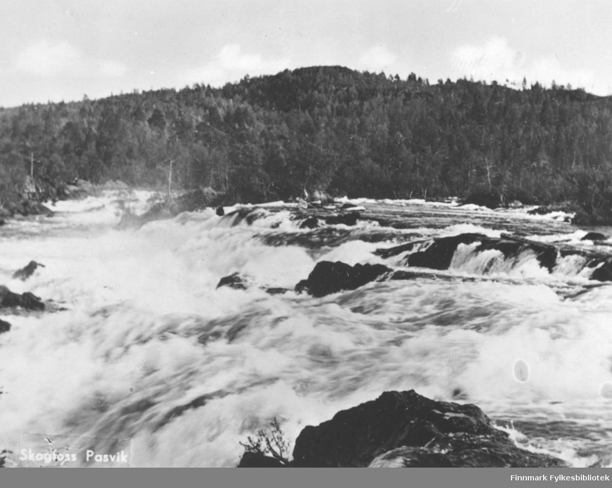 Postkort fra Skogfoss i Pasvik. På bildet ser vi vannet i fossen skummer når det renner over og nedover steinene. Det er trær helt ned til vannkanten. Fjellet i bakgrunnen er trekledt