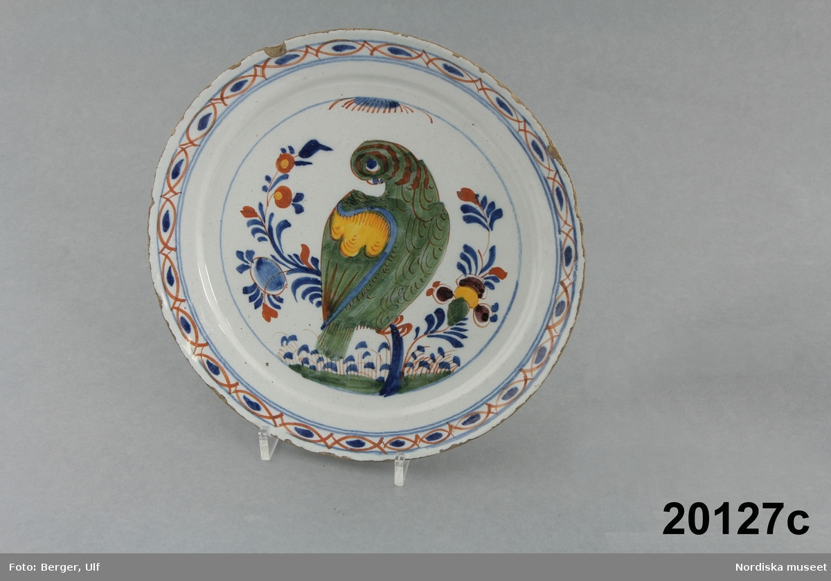 Djur, fågel, papegoja