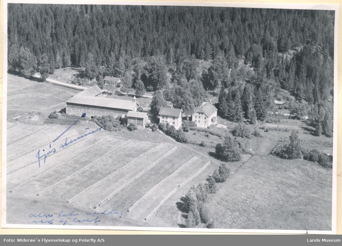 Skøien, Ringelia, Søndre Land