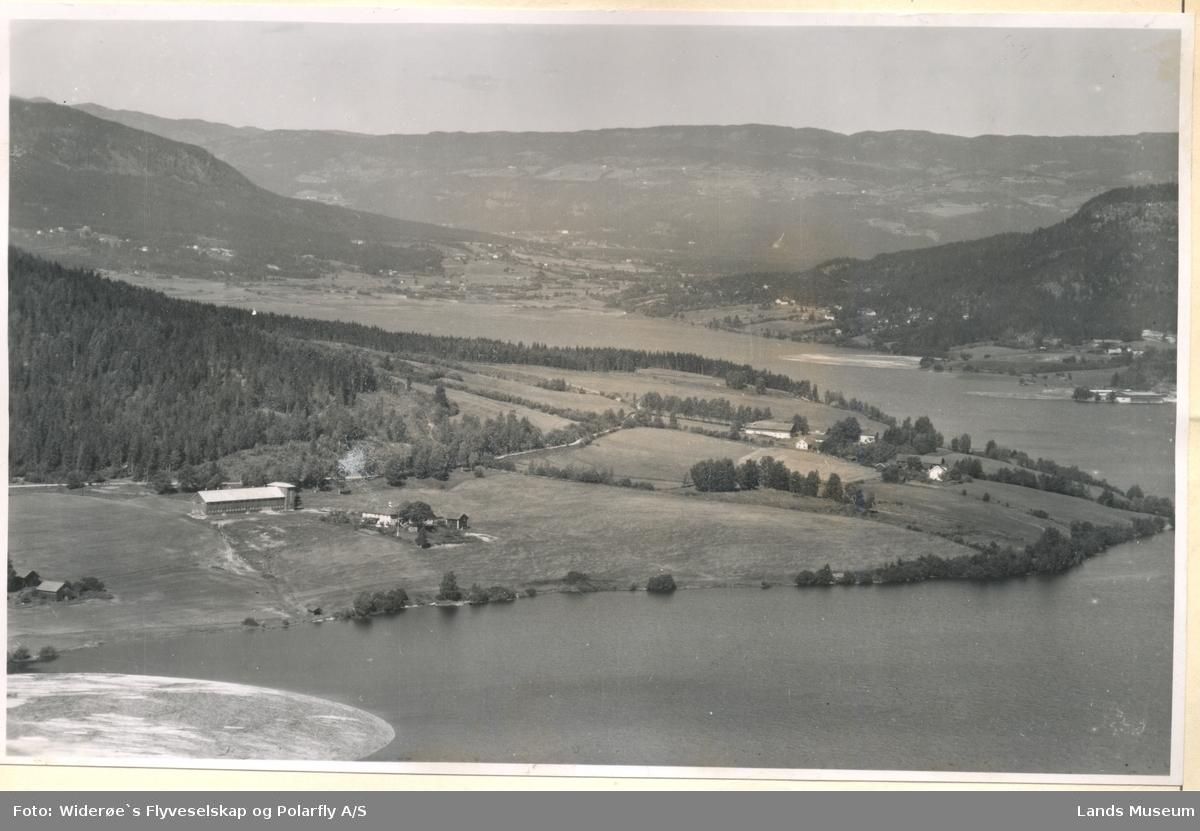 Viker og Røen, Fluberg