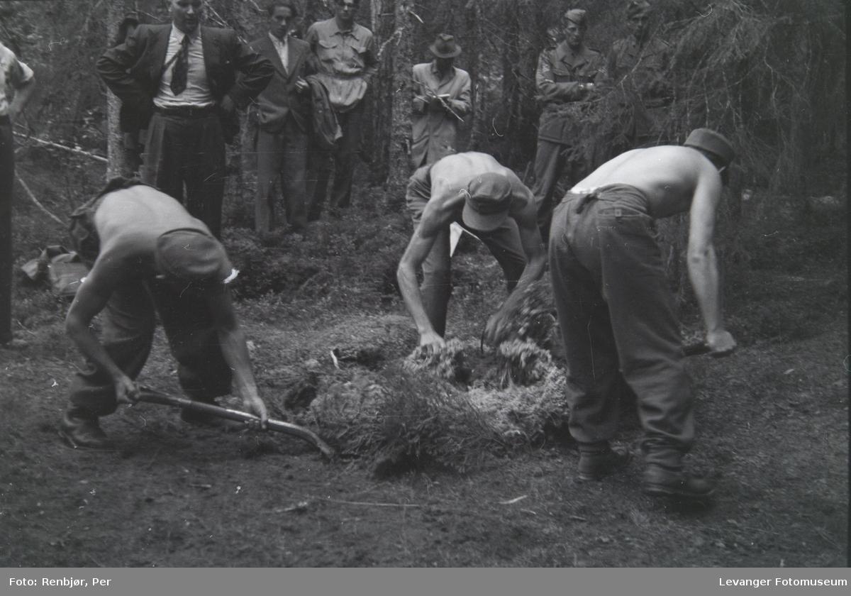 Åpning av graver i krigsfangeleiren på Falstad, Falstadskogen.