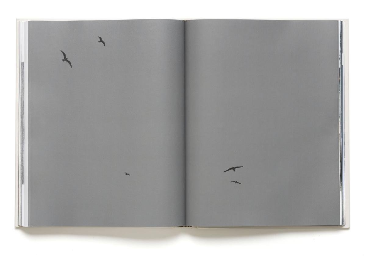 """Kunstnerboken inneholder fotografier og tekster og er en fremstilling av Bjørvika-området, i tiden før og under byggingen, sett gjennom fire kunstnere og en forfatter og samfunnsforsker (Fitzpatrick) Boken fungerer som en hukommelsesinnretninger. De skriver seg inn i dokumentarisk tradisjon, hvor betrakteren tildeles rollen som betrakter og tas med """"bak kulissene""""."""