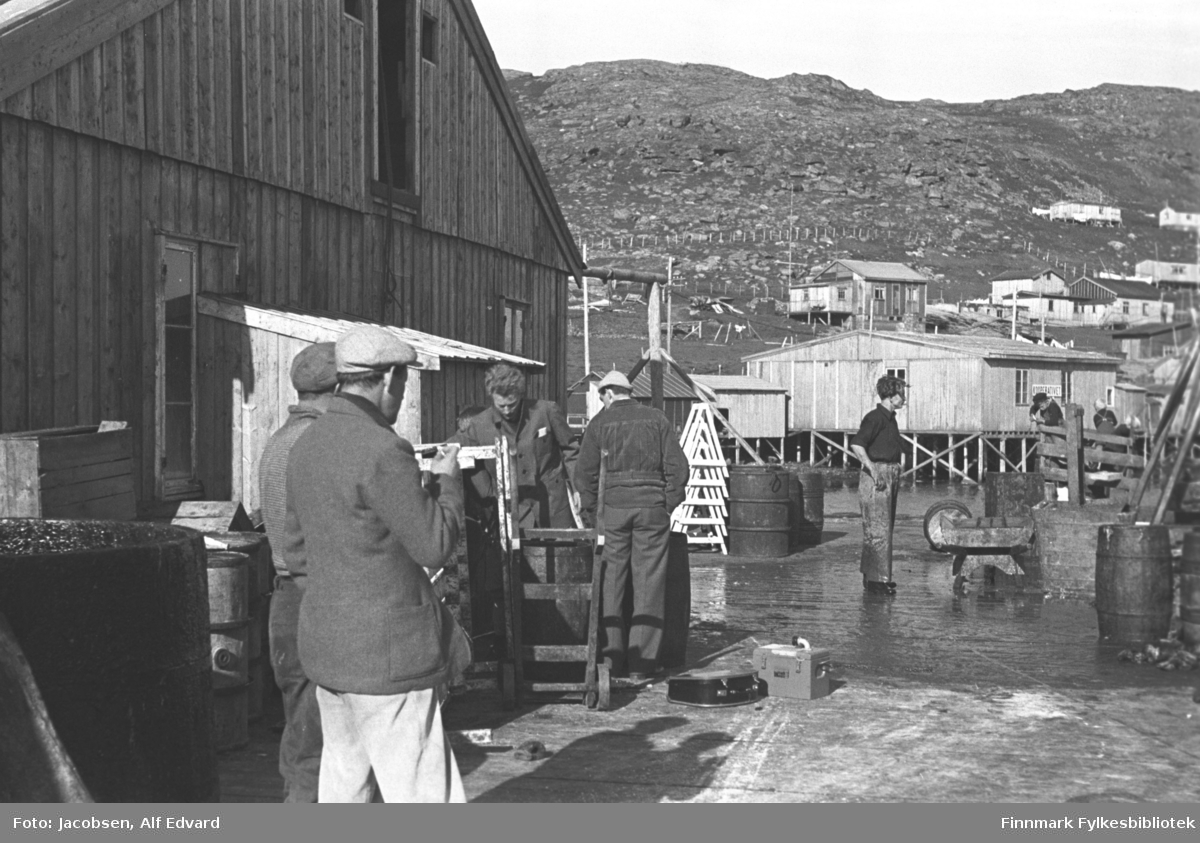 Bilde fra havneområdet i Havøysund. Bygget til venstre er Samvirklagets fiskebruk. Bygget har ganske mørkt, stående panel og en lasteluke oppe i røstet. Et lite tilbygg med skrått tak står på røstveggen og med to avlange vinduer på hver side. Noen tønner og et par trekasser står inntil veggen. Flere menn er i arbeid. Mannen som er vendt mot kamera foran veggen på fiskebruket er Åge Pedersen. De fleste har mørke klær, men mannen nærmste kamera har lys bukse og lys skyggelue. En mann står midt på plassen, iført mørk genser og litt lysere bukse. Noen tønner/fat av metall står litt bak han. Den umalte brakka, omtrent midt på bildet, som står oppå en trekai er Coopen brakka. Et mindre bygg står til venstre for det. En mørkkledt mann lener seg mot det korte gjerdet  foran Coopen. Noen hus og brakker er satt opp i lia ovenfor. Brakka som ses rett over taket på Coopen-brakka er huset til Gyda og Rolf Olsen. Huset til høyre for det er Seppola og litt opp og til høyre for Seppola, er huset til Alfred Jørgensen. Fjellet og dalsiden har lite og ingen vegetasjon, men mye stein og et gjerde går på tvers av dalsiden.