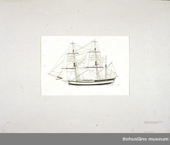 Montering/ram: Passepartout av tunn grå kartong; 55 x 66 cm, Barkskeppet Fortuna, byggt 1792 i Umeå, 120 svåra läster, en sin tids spanienfarare. Övrig historik se UM72.26.001.