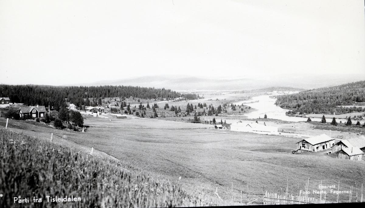 Jordbrukslandskap og elva i Tisleidalen
