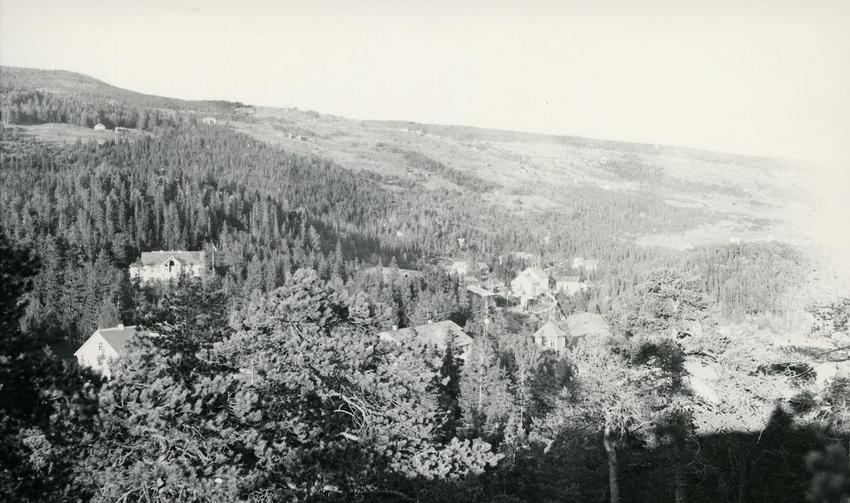 Bebyggelse i skog. Furulund kvileheim, seinere pensjonat