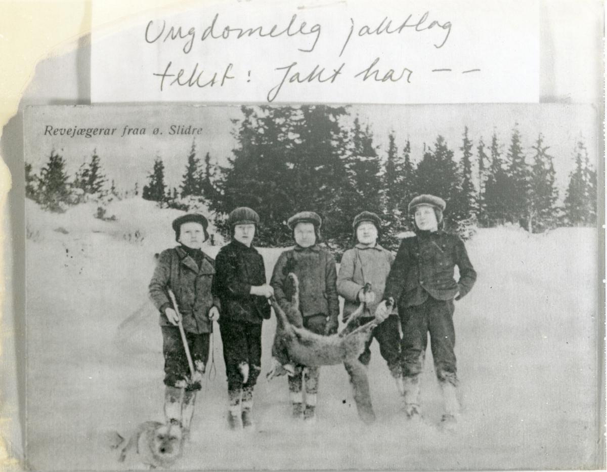 Fem unge gutar etter revejakt, held ein rev imellom seg