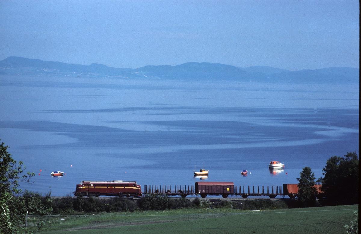 NSB godstog på vei mot Trondheim ved Vikhamar ved Trondheimsfjorden med dieselelektrisk lokomotiv type Di 3.