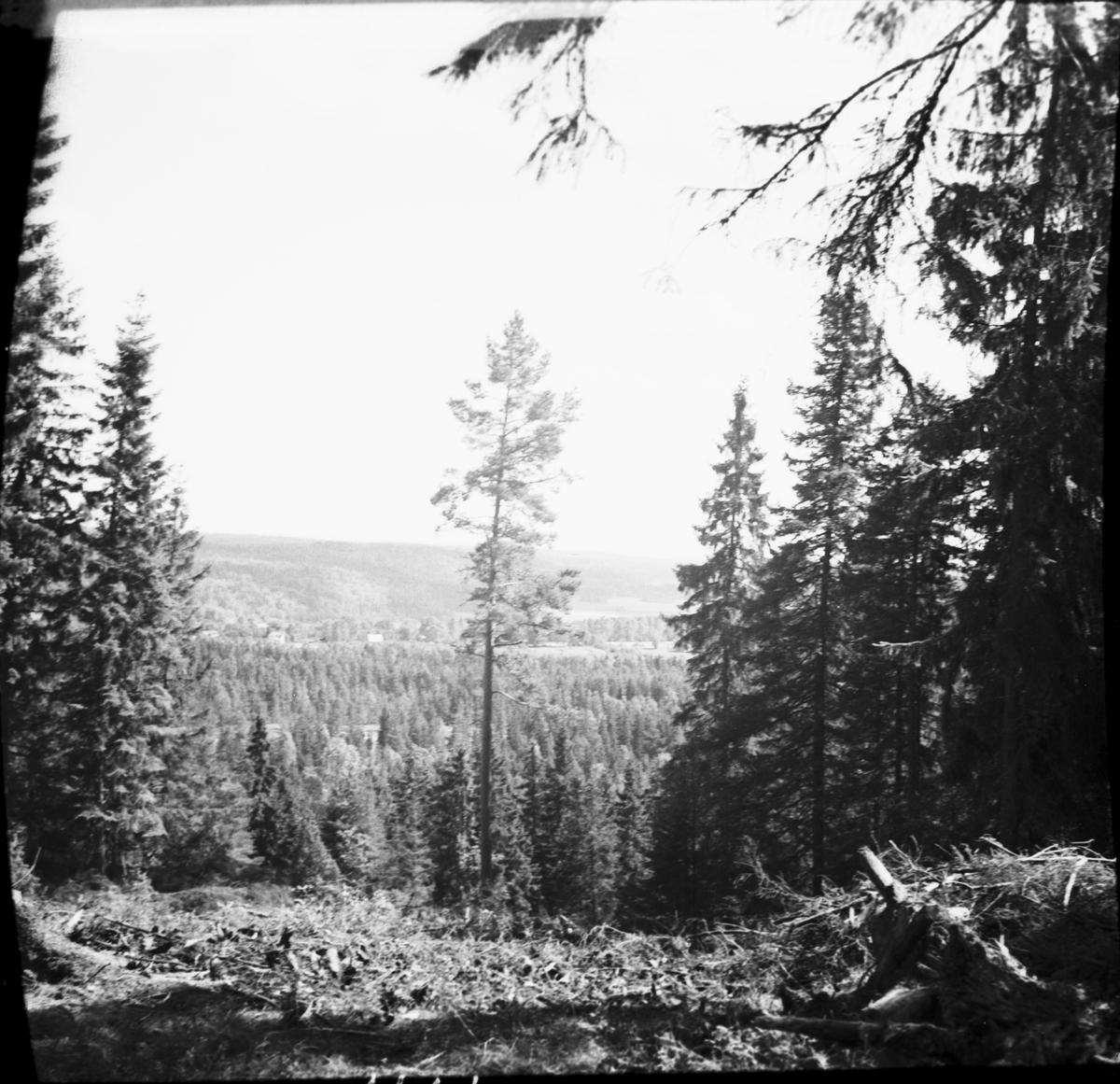 Utsikt från hällkistan mot Kinnekulle  Kvarnbyn Fröslog