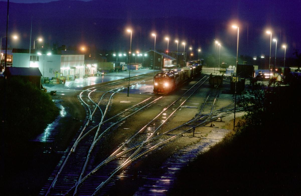 Fauske stasjon med overlangt godstog 5794 Bodø - Trondheim som venter på kryssende tog.