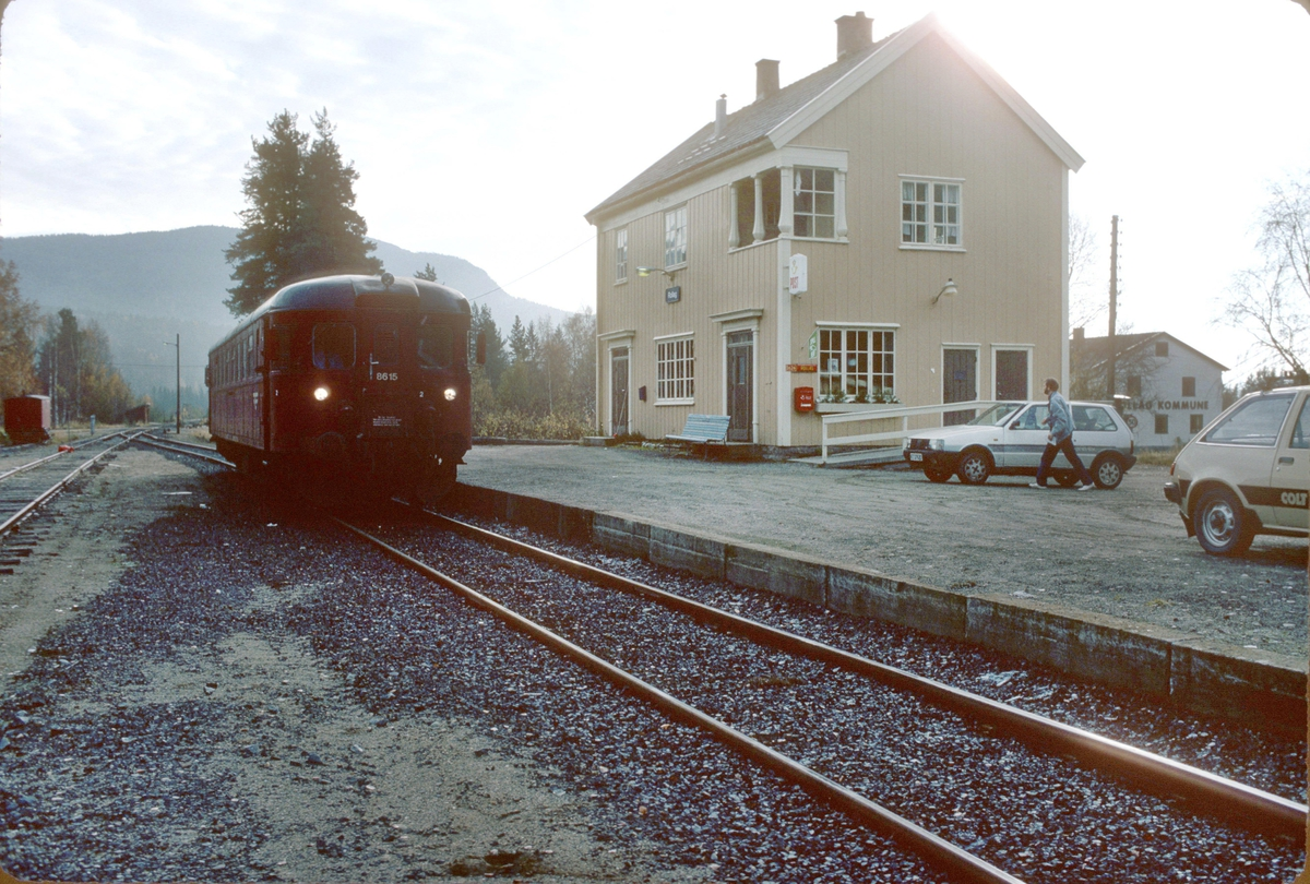 Rollag stasjon med tog til Rødberg. NSB dieselmotorvogn BM 86K 15.