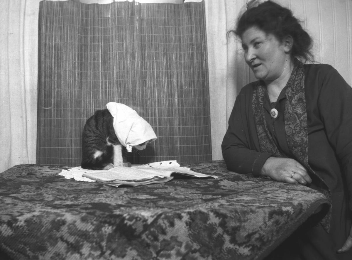 Tor Hauges mormor Lovise Amundsen sitter ved et bord. Stedet er ukjent, men kan være i et hus på Ekkerøy i Vadsø komune.