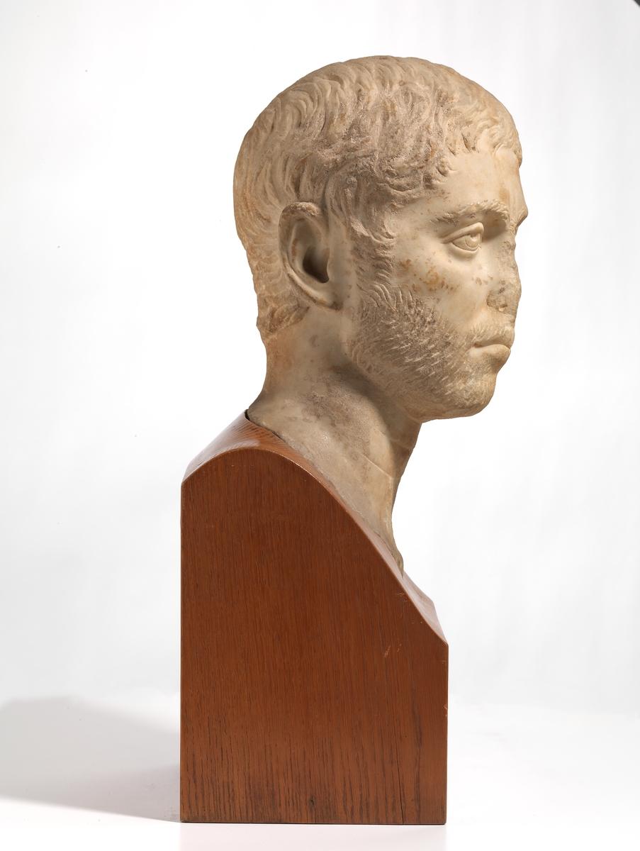 Portrett av en mann [Hode]