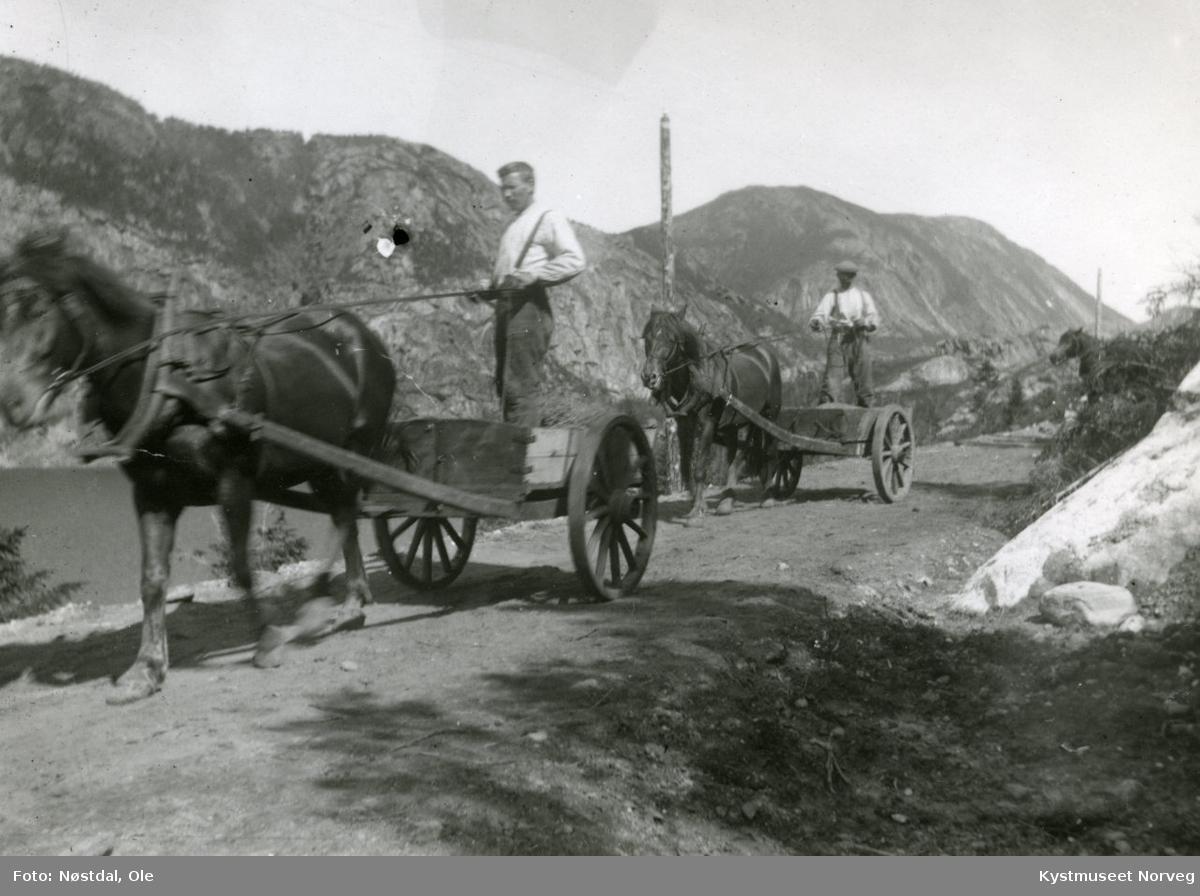 Hester på vegarbeid