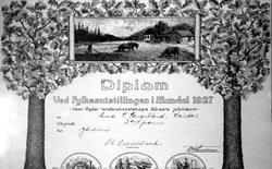 Diplom ved fylkesutstillinga i Mandal 1927, Tildelt Anna San