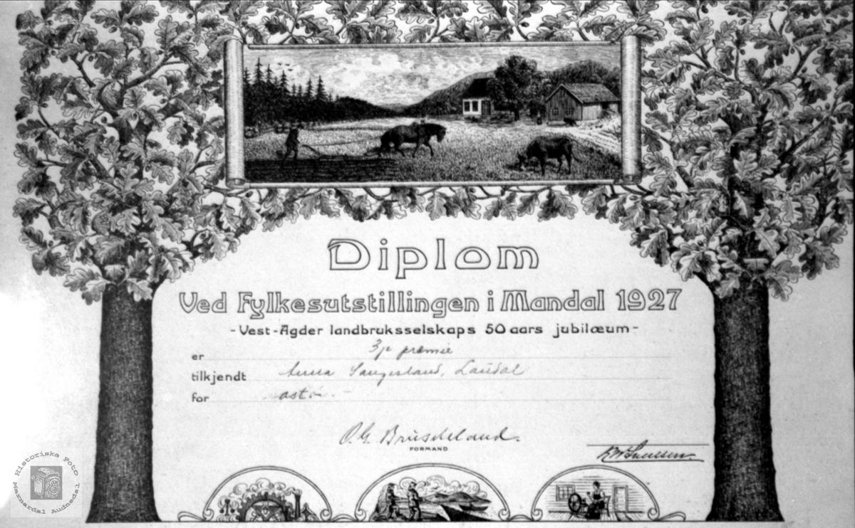 Diplom ved fylkesutstillinga i Mandal 1927, tildelt Anna Saqngesland.