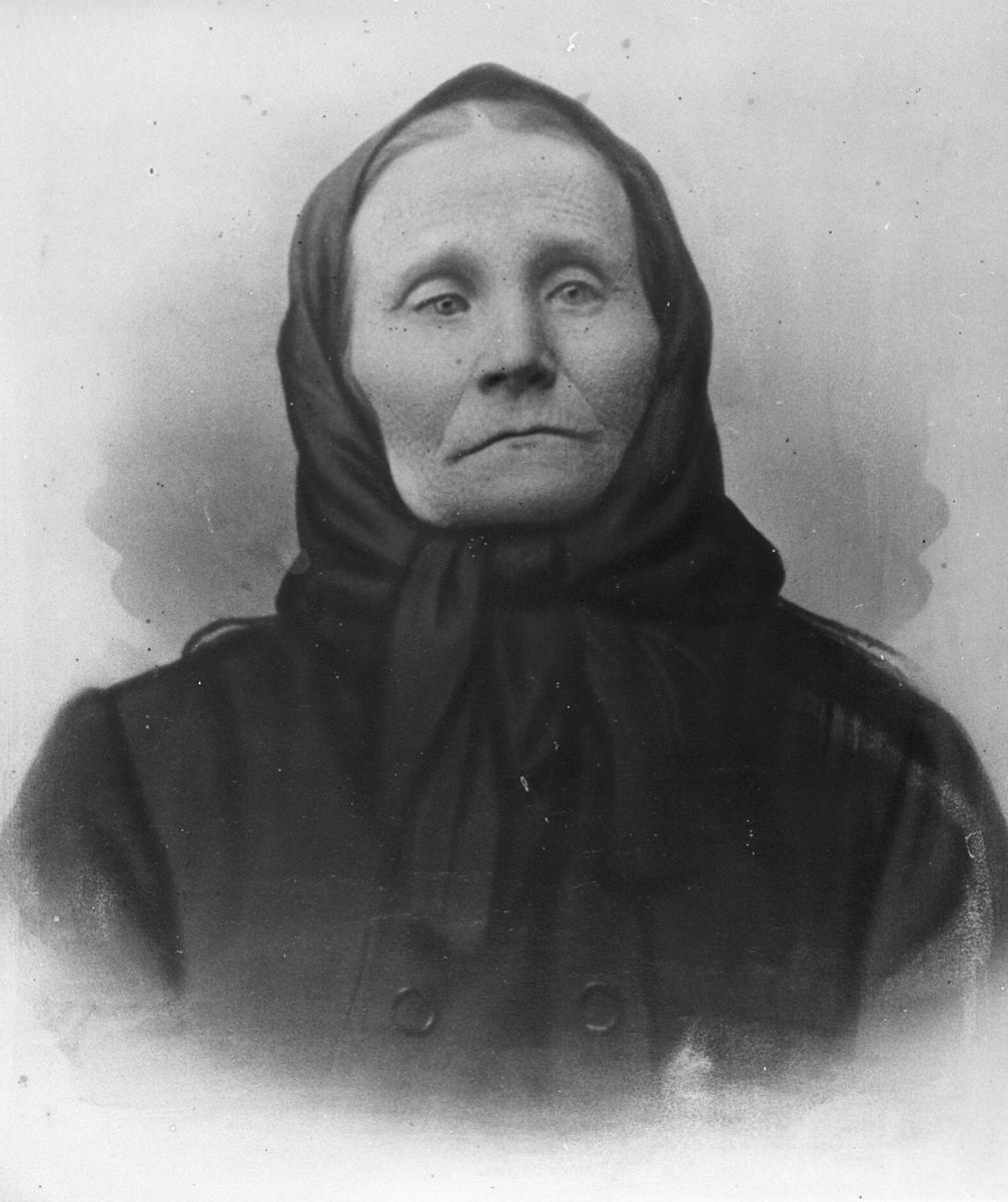 Portrett av Lena Madlena Glasin (gift med Johan Jakob Reisænen). Også etternavn Larini og Lasinen eller Klasinen er brukt i folketellingen. Hun ble født i Kuusamo, Finland, i 1848.