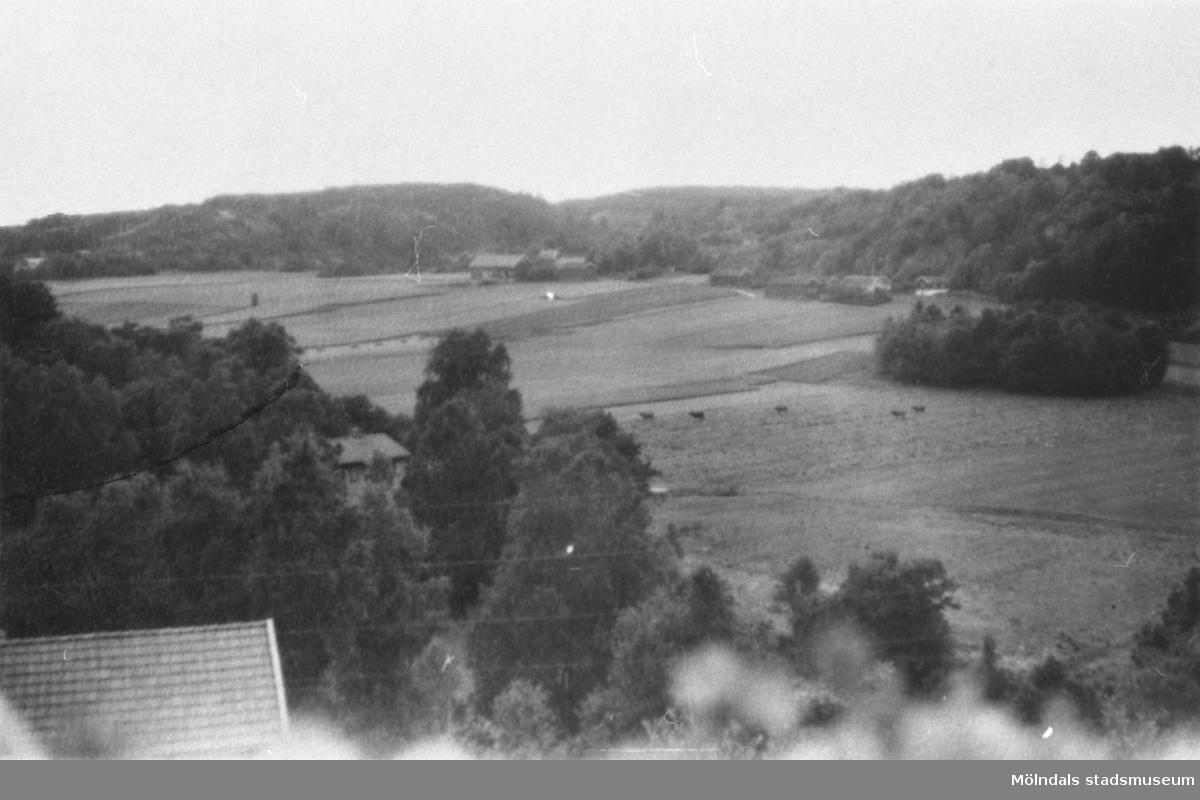 Utsikt från Torrekulla mot Alvered.