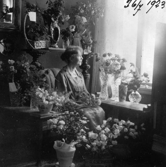 Femtioårsjubilar sommaren 1923