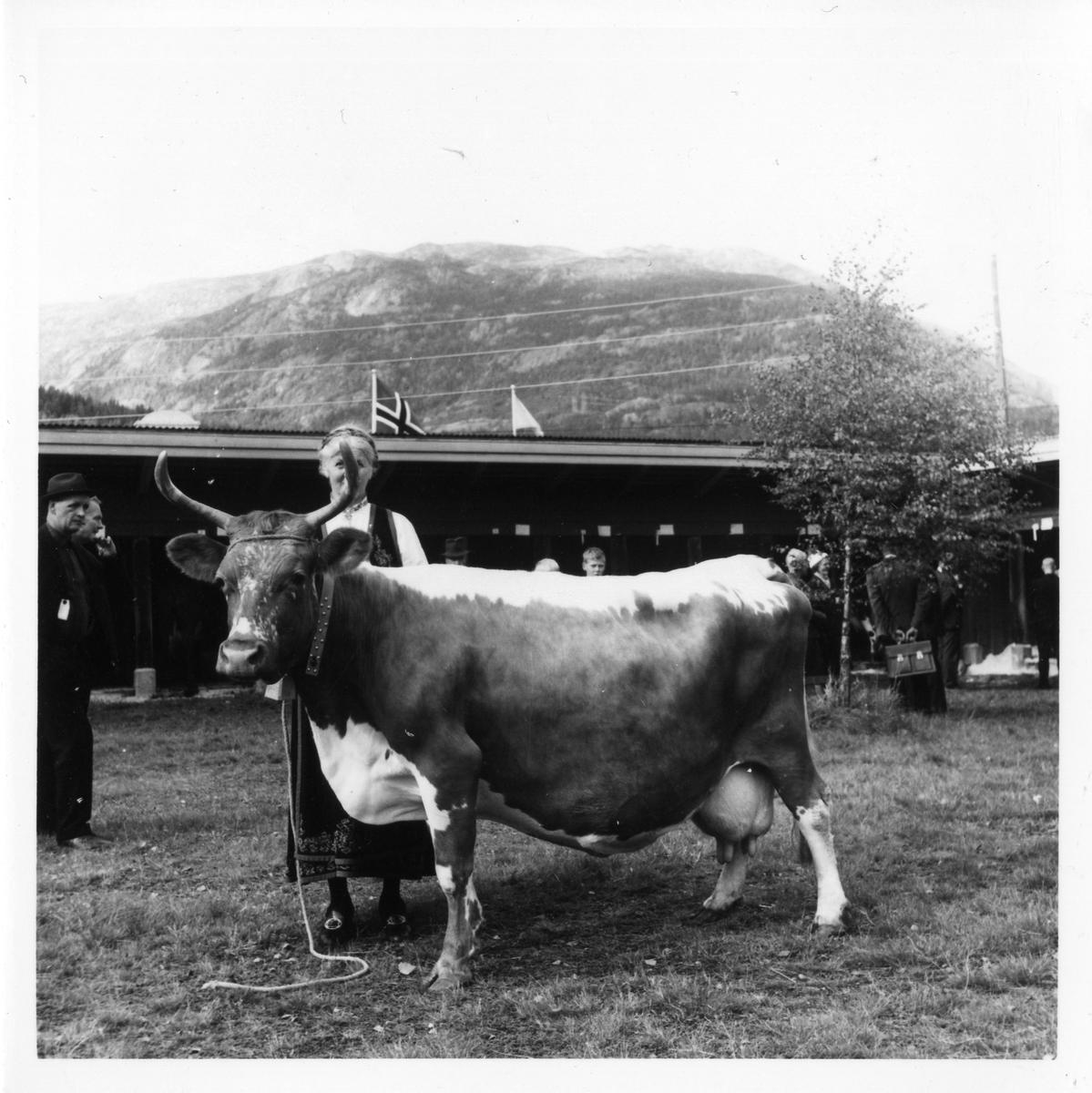 Borghild Glosimot med Teleros.