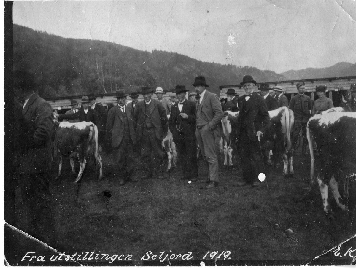 Utstillinga i Seljord 1919