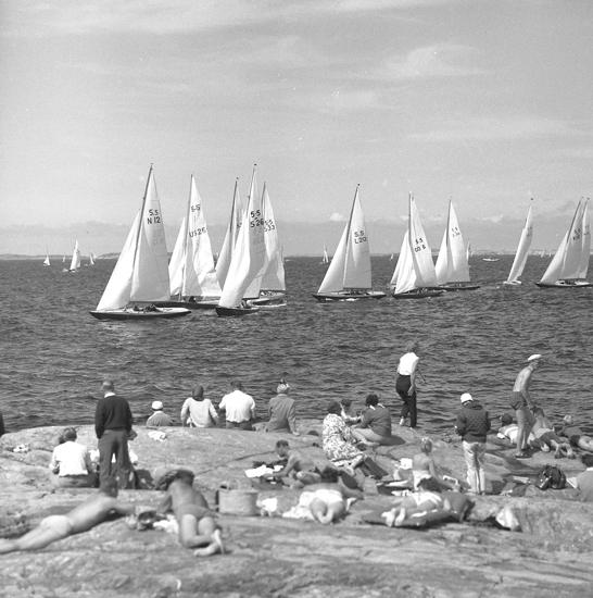 Kappsegling på Marstrandsfjorden med 5.5-metersjakter 1960