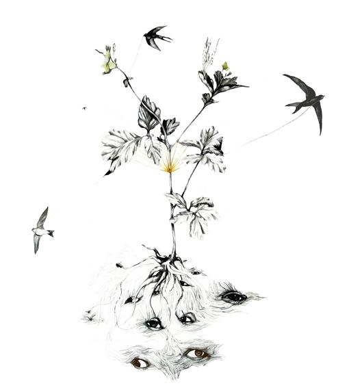 Elementer fra filosofi, botanikk og billedkunst kobles sammen til en ny helhet.