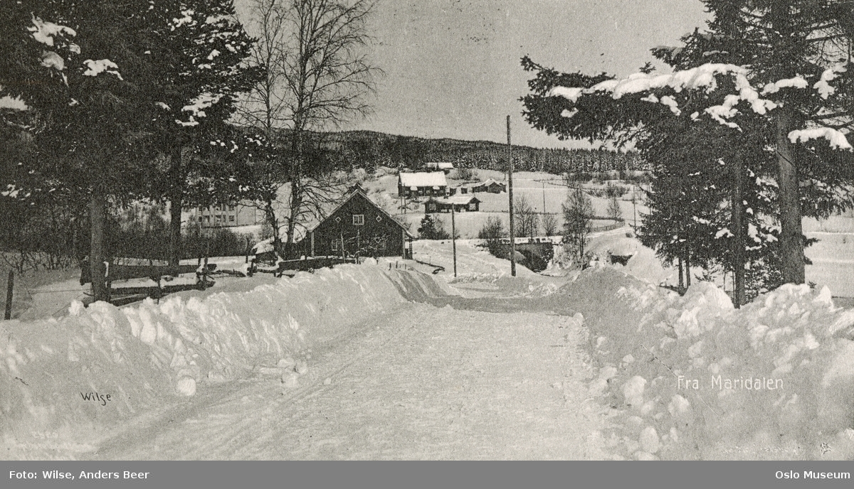 vei, snø, brøytekanter, kulturlandskap, gårder, bro