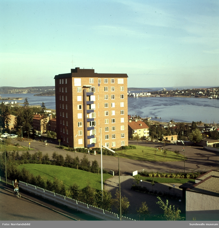 En stor grupp bilder på flerfamiljshusen i bostadsområdet Norrliden i Sundsvall. Baldersvägen, Kungsvägen, Norrlidsgatan, Tivolivägen.