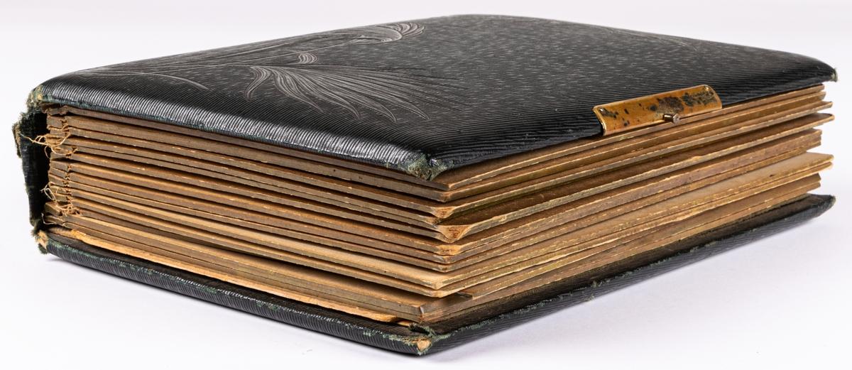 Visitkortsalbum med svarta pärmar.