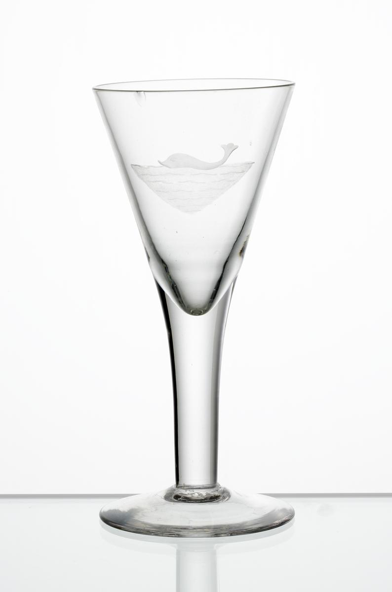 Design: Edward Hald. Brännvinsglas, konande kupa. Graverad delfin (?) i vatten på kupan.