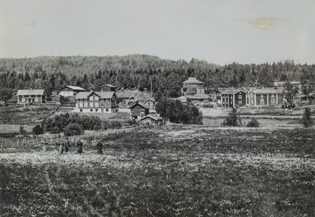 Greksåsars by med Greksåsars hyta. Fotot tagen troligen före 1880.