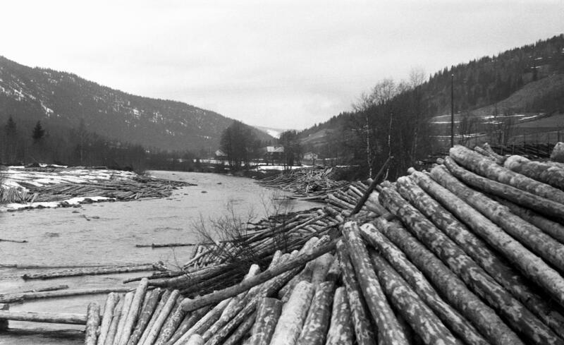 Foto av tømmer stablet på elvebredd klar til å slippes i elva. (Foto/Photo)