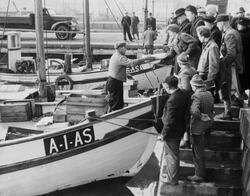 Oslo havn. Fisk og rekesalg. Mars 1952