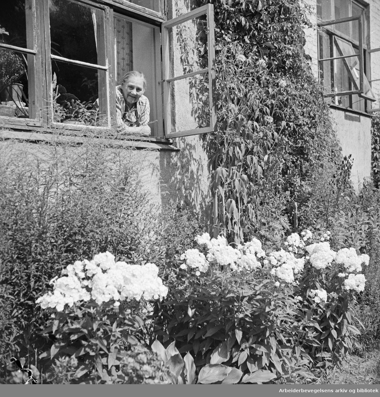 Blomsteridyll i Agathe Grøndahls gate 12 på Torshov. Olivia Aronsen. Juli 1949.