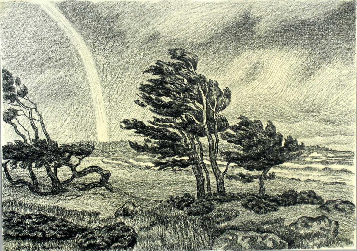 Landskap i storm.