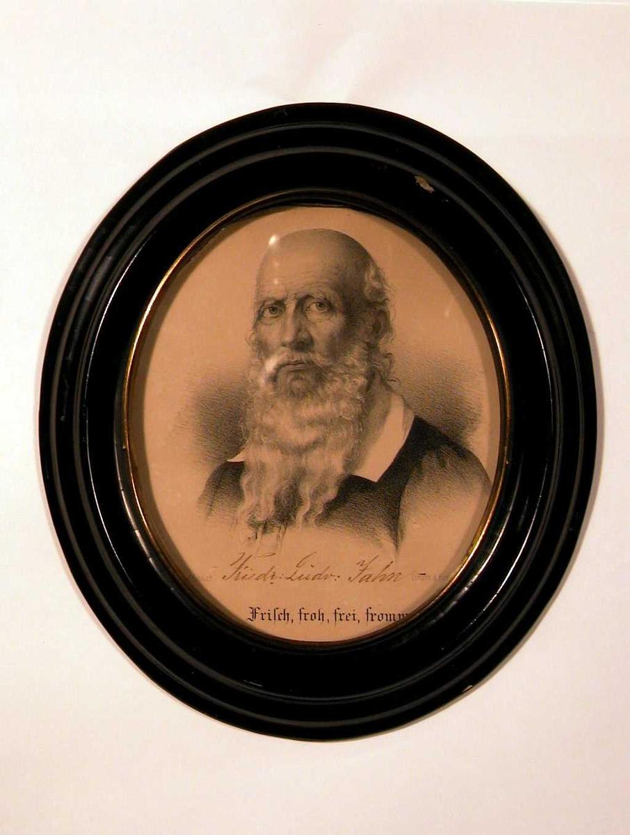 Portrett av eldre mann med helskjegg, lite hår.