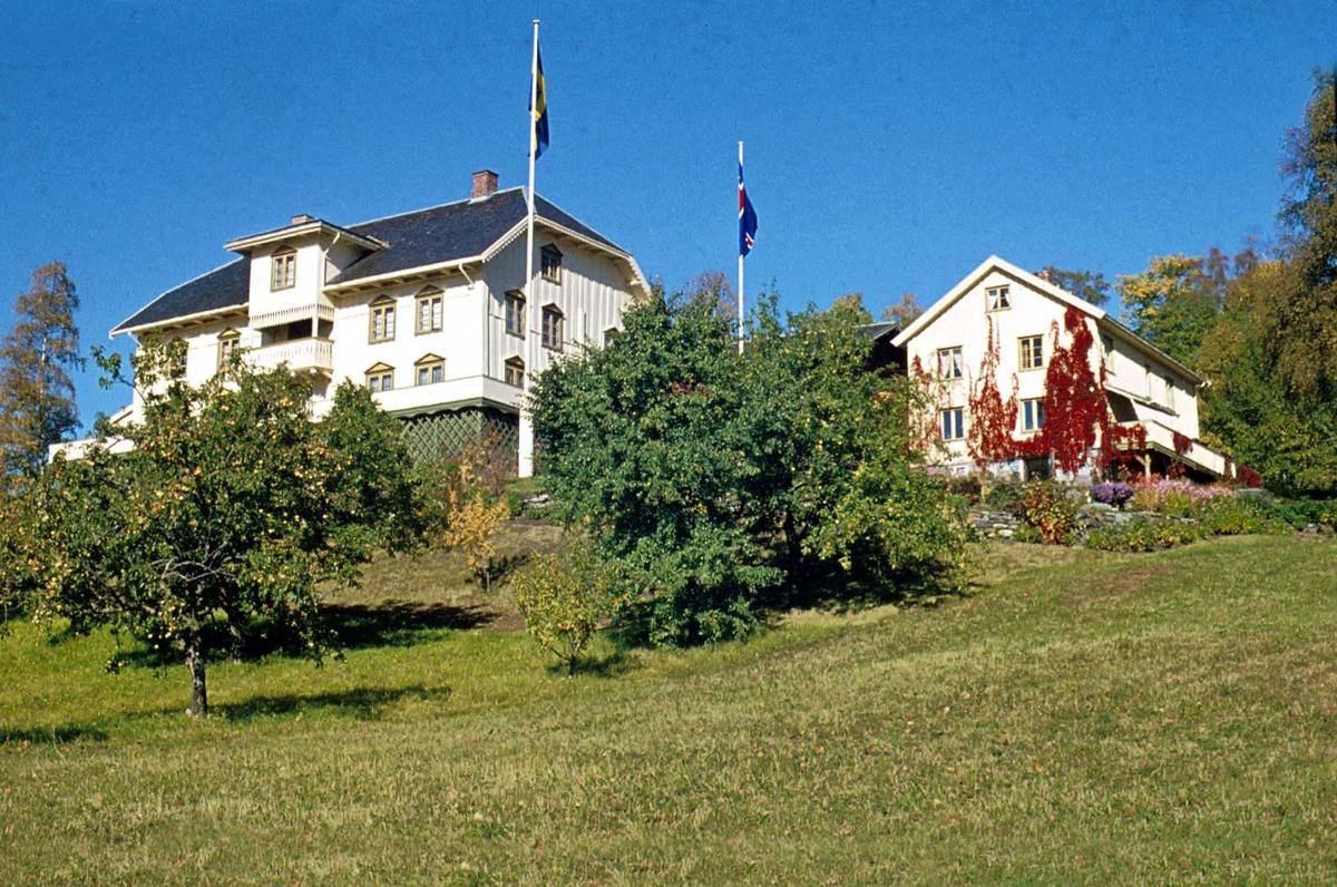 DOK:1972, Aulestad, hage, flagg, drengestua,