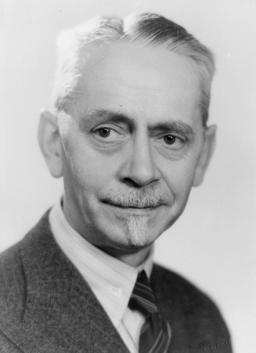portrett, byråsjef, Olaf Johannes Riese