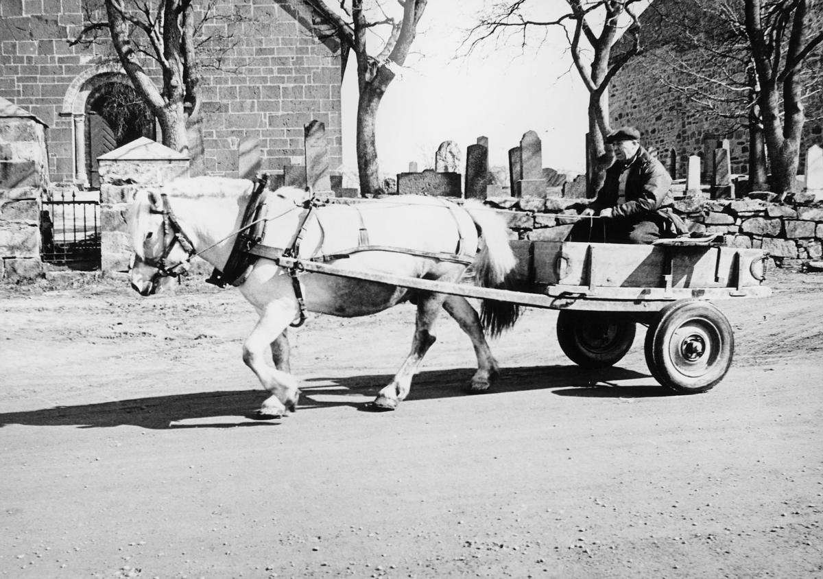 postskolen, eksteriør, søsterkirken, 1 mann, 1 hest, vogn med 2 hjul