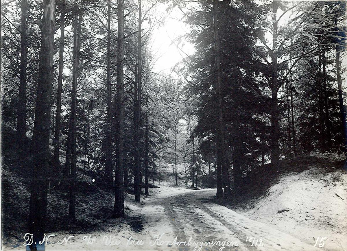"""""""18/12-1912"""" Nitriden. Idyllisk vei til kontorbygningen"""