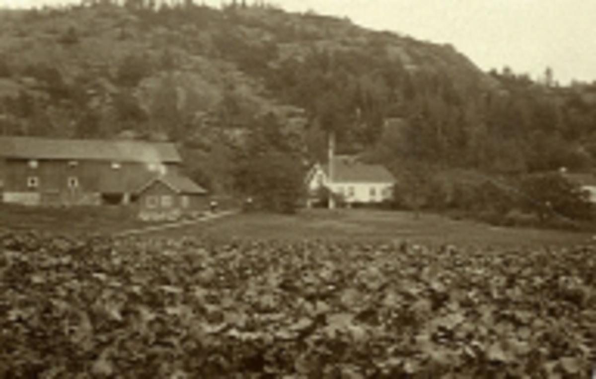 Nordre Lunden  - G.nr. 27, B.nr. 1