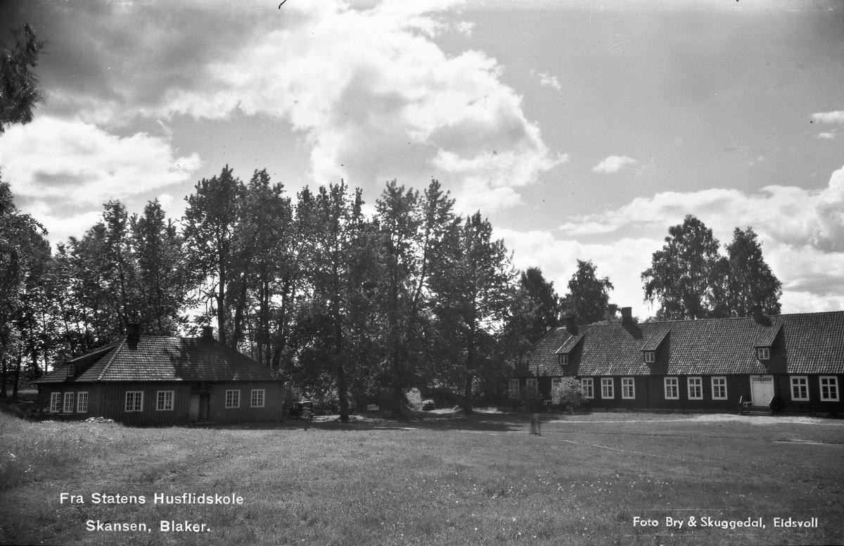 Statens Husflidsskole Skansen, Blaker.